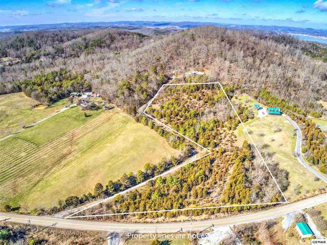 Lot 3 Indian Creek Rd, Dandridge, TN 37725 (#226554) :: Colonial Real Estate