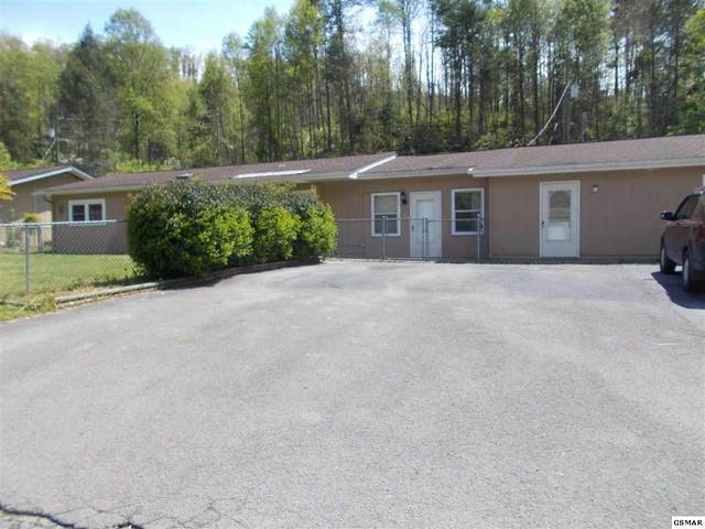 204 Willow Way, Gatlinburg, TN 37738 (#227099) :: The Terrell Team