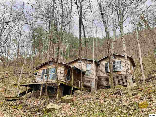 85 Chilly Springs Road, Maryville, TN 37803 (#227182) :: Prime Mountain Properties