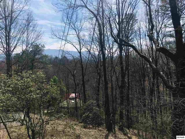Lot 18 Tanrac Trl, Gatlinburg, TN 37738 (#227189) :: Four Seasons Realty, Inc
