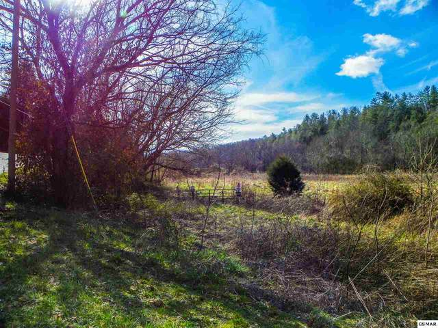 49.57 Acres Wilhite Road, Sevierville, TN 37876 (#227395) :: Colonial Real Estate