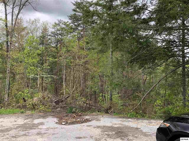 Lot 6 River Birch Way, Sevierville, TN 37862 (#227491) :: The Terrell Team