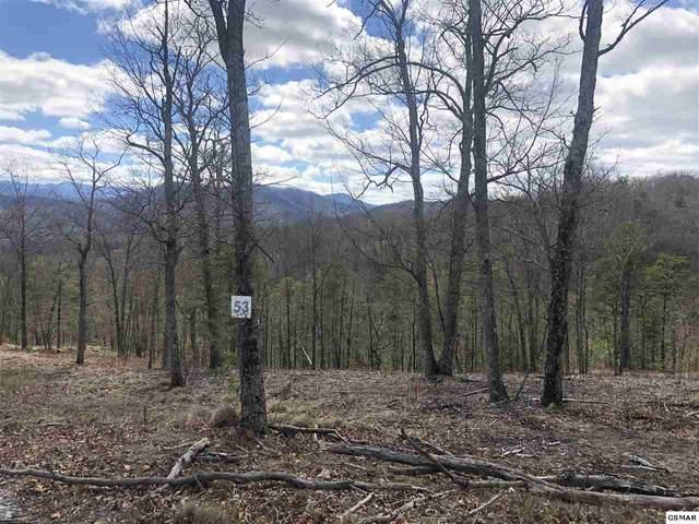Lot 53 Misty Bluff Trail, Sevierville, TN 37862 (#227642) :: Billy Houston Group