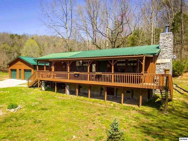 2646 Jackson Ridge Rd, Tazewell, TN 37879 (#227646) :: Four Seasons Realty, Inc