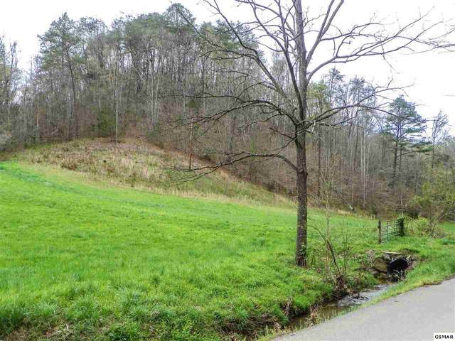 1940 Long Branch Road Tract 3, Seymour, TN 37865 (#227653) :: Colonial Real Estate