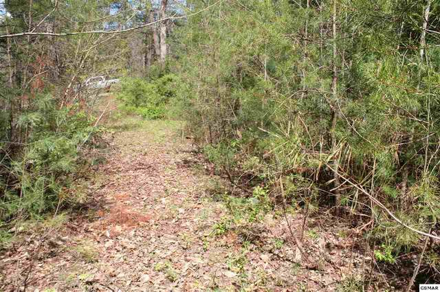 N Ball Hollow Parcel 076 012., Sevierville, TN 37876 (#227747) :: Colonial Real Estate