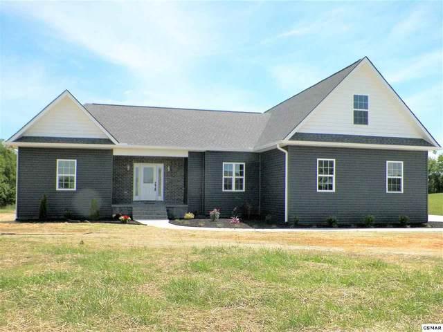 119 Duck Pond Dr, Dandridge, TN 37725 (#227848) :: Colonial Real Estate