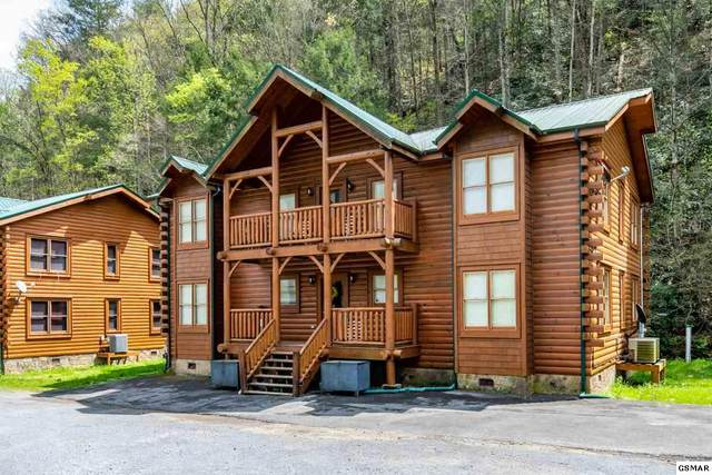 315 Caney Creek Road, Pigeon Forge, TN 37863 (#227898) :: Colonial Real Estate