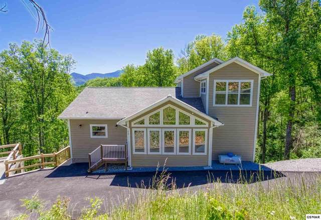919 Cliff Branch Road, Gatlinburg, TN 37738 (#228103) :: The Terrell Team
