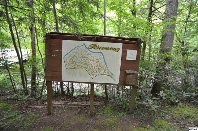 Group of Lots Riversong Way, Sevierville, TN 37876 (#228312) :: The Terrell Team