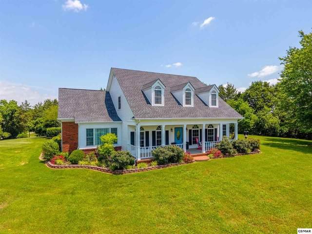 8126 Robert Watkins Rd, Talbott, TN 37877 (#228494) :: Colonial Real Estate