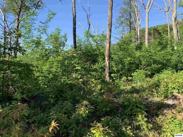 Lot 9 Topside Drive, Gatlinburg, TN 37738 (#228498) :: Prime Mountain Properties