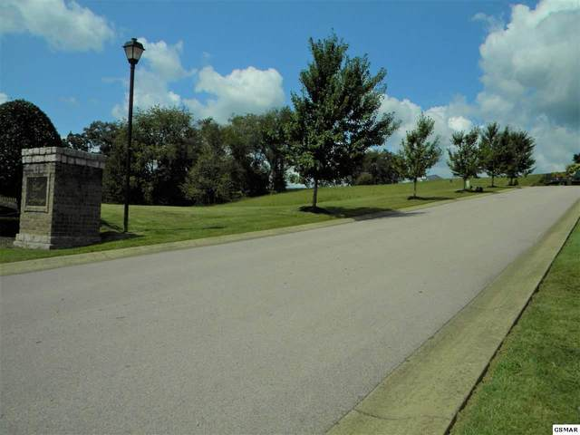 Lot Lot 46 Rippling Waters Circle, Sevierville, TN 37876 (#228721) :: The Terrell Team
