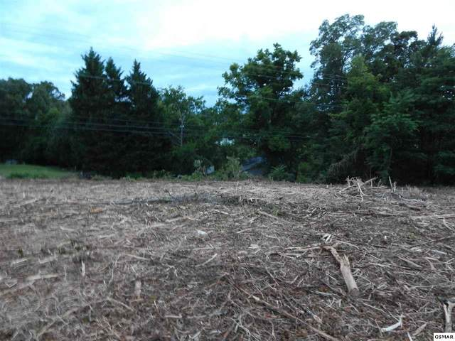Piney Rd - Lot 2 Lot is Right Of, Kodak, TN 37764 (#228770) :: Suzanne Walls with eXp Realty