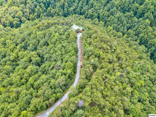 Lot 19 Fawn Hollow Trail, Townsend, TN 37882 (#228928) :: Four Seasons Realty, Inc