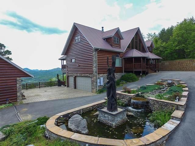 2556 Walnut Ridge Way, Sevierville, TN 37862 (#228940) :: Billy Houston Group