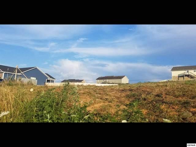 Lot 175 Low Valley Drive, Dandridge, TN 37725 (#228972) :: Four Seasons Realty, Inc