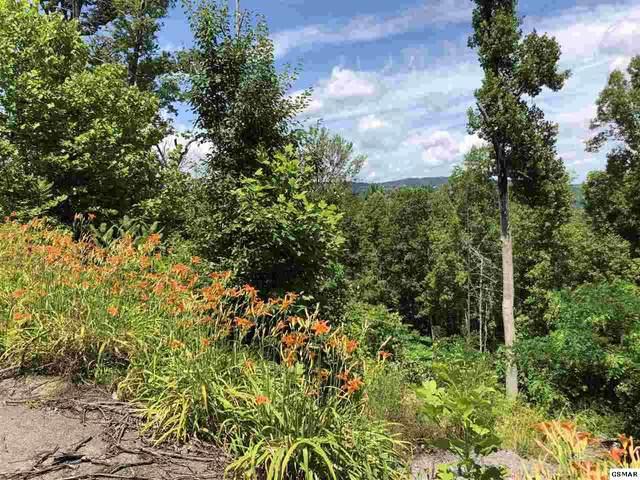520 Forest Springs Dr Lot 2, Gatlinburg, TN 37738 (#228996) :: Colonial Real Estate