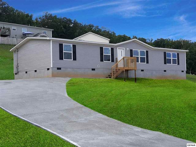 1309 Elm Village Ct, Dandridge, TN 37725 (#229138) :: Billy Houston Group