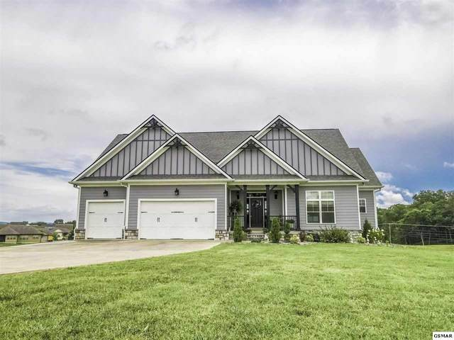 1230 Rippling Waters Circle, Sevierville, TN 37876 (#229260) :: The Terrell Team
