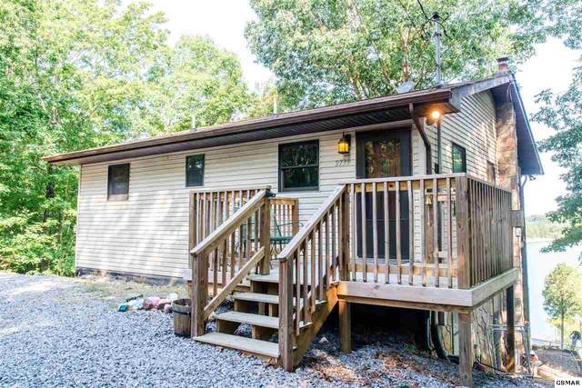 2739 Windy Cove Way, Sevierville, TN 37876 (#229277) :: The Terrell Team