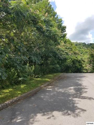 Lot 15B Frontier View Drive, Sevierville, TN 37876 (#229378) :: The Terrell Team