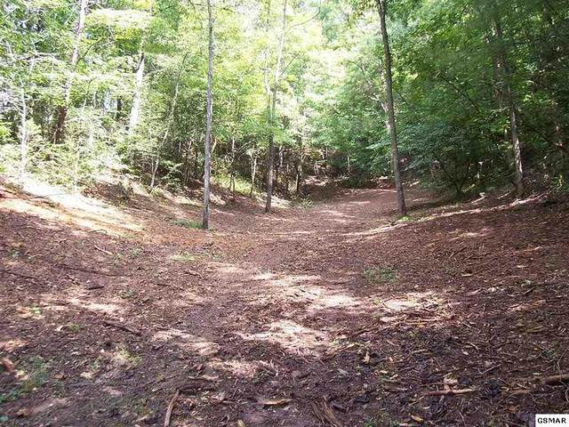 Parcel 055.03 Pearl Valley Rd Tract 2 Dennis , Sevierville, TN 37876 (#229446) :: Four Seasons Realty, Inc