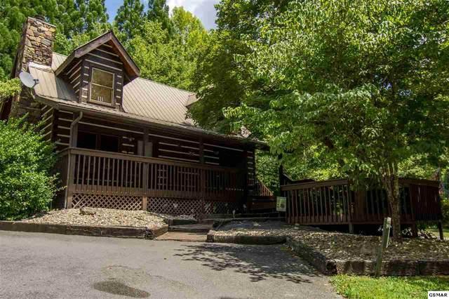 202 Tsali Way, Sevierville, TN 37876 (#229501) :: Four Seasons Realty, Inc