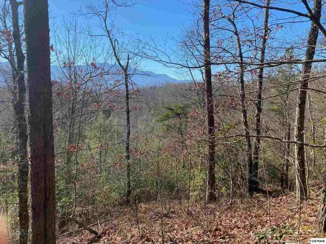 Lot 69 Big Bear Ridge Road, Gatlinburg, TN 37738 (#229548) :: Jason White Team | Century 21 Legacy