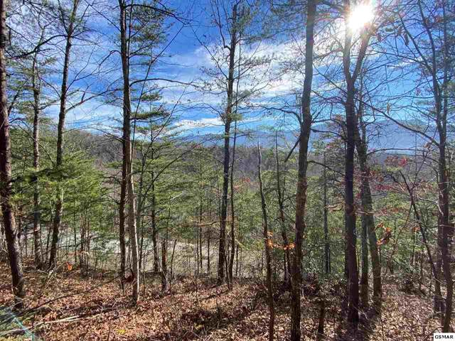 Lot 70 Big Bear Ridge Road, Gatlinburg, TN 37738 (#229549) :: Jason White Team | Century 21 Legacy