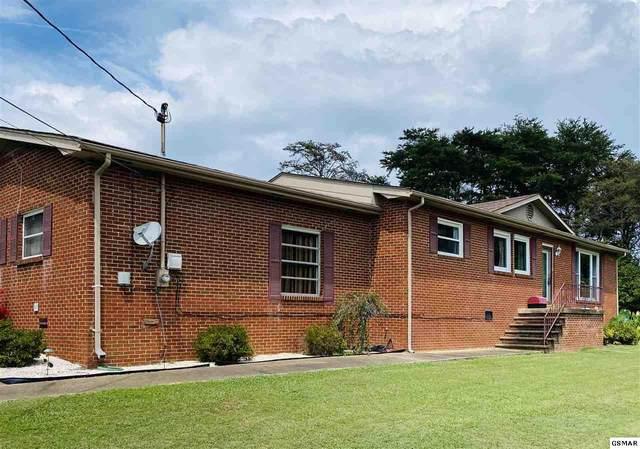 120 County Line Rd, Seymour, TN 37865 (#229661) :: Four Seasons Realty, Inc