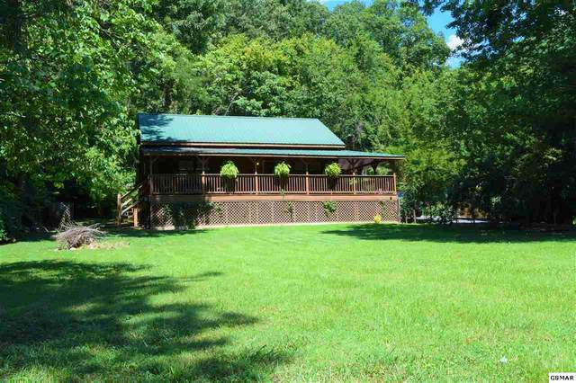 2485 Red Bank Rd, Sevierville, TN 37876 (#229670) :: Four Seasons Realty, Inc