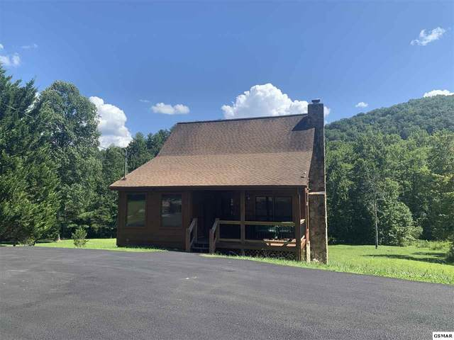 3955 Millers Ridge Way Tennessee Charm, Sevierville, TN 37862 (#229719) :: Colonial Real Estate