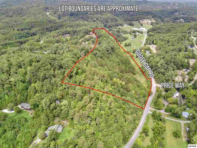 Lot 3 Goose Gap Rd, Sevierville, TN 37862 (#229908) :: Suzanne Walls with eXp Realty