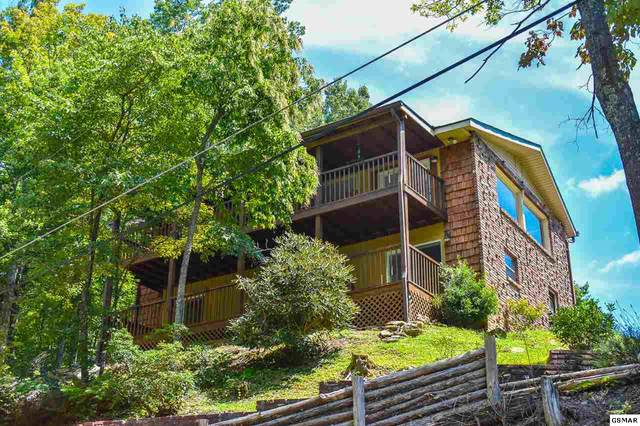 711 Sunshine Trl, Gatlinburg, TN 37738 (#229948) :: Billy Houston Group