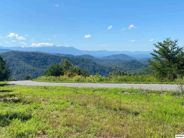 Lot #38 Mountain Ash Way, Sevierville, TN 37876 (#230159) :: Colonial Real Estate