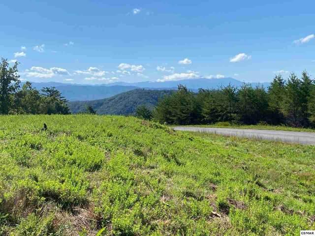 Lot #39 Mountain Ash Way, Sevierville, TN 37876 (#230160) :: Jason White Team   Century 21 Legacy