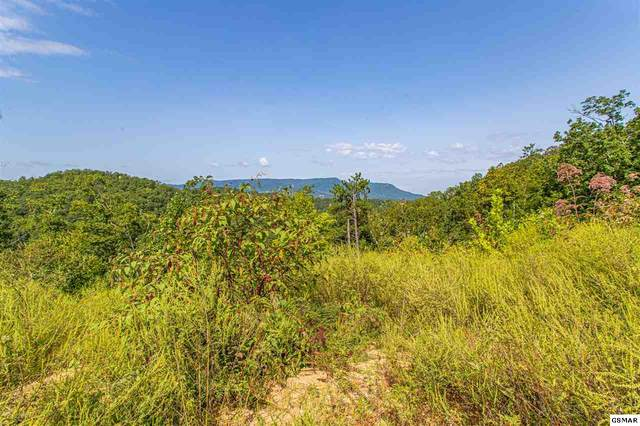 Lot 84 Smoky Overlook Way, Sevierville, TN 37862 (#230184) :: Tennessee Elite Realty