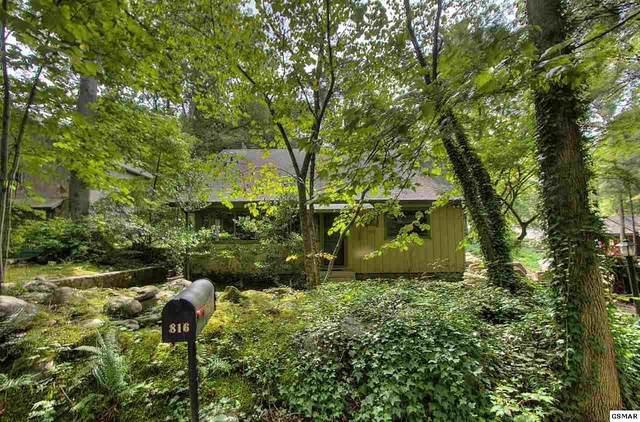 816 Leconte Drive, Gatlinburg, TN 37738 (#230255) :: JET Real Estate