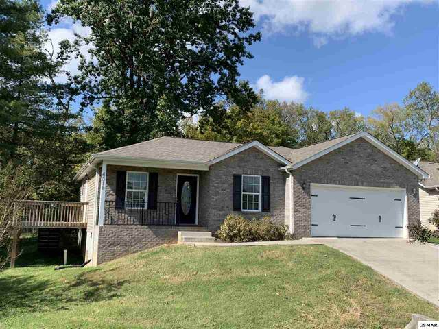 6319 Daisy Pointe Lane, Knoxville, TN 37920 (#230500) :: Billy Houston Group