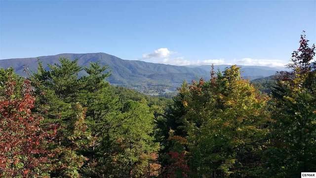 Lot 32 Hatcher Mountain Rd., Sevierville, TN 37862 (#230553) :: Jason White Team | Century 21 Legacy