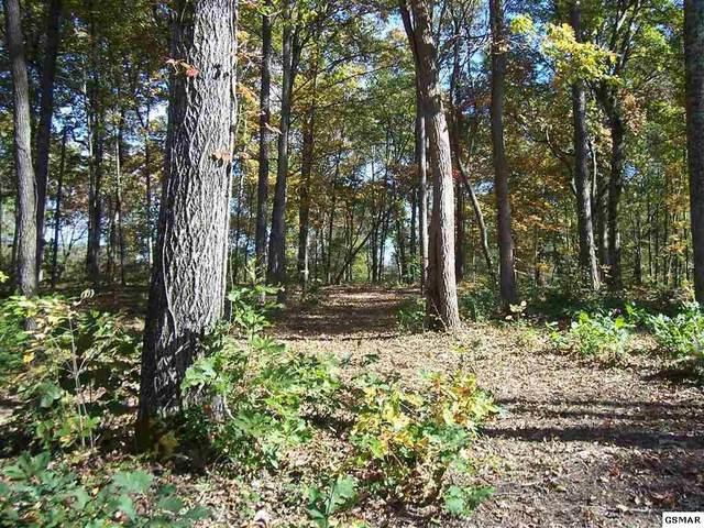 Lot 21 Tom Patterson Trail Parcel 009.28, Dandridge, TN 37725 (#230683) :: Jason White Team | Century 21 Four Seasons
