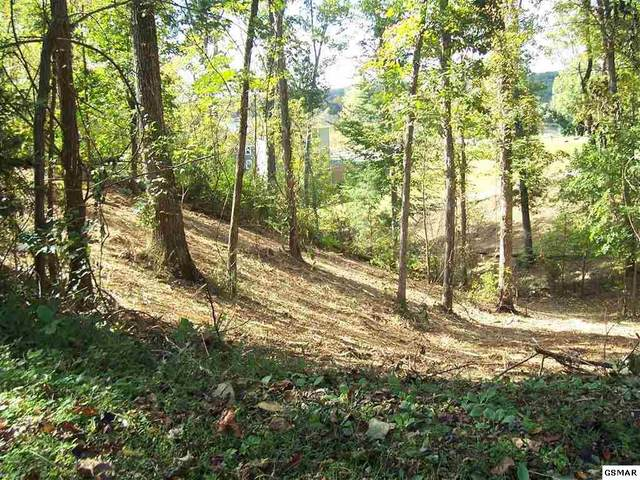 Lot 41 Sanctuary Shores Way, Sevierville, TN 37876 (#230700) :: Jason White Team | Century 21 Four Seasons