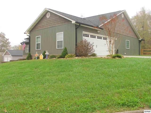 1423 Pleasant Oaks Rd, Sevierville, TN 37876 (#230842) :: Billy Houston Group