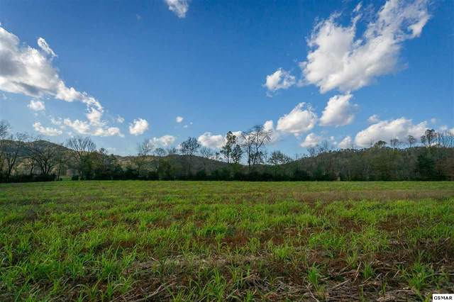 Valley View Rd, Sevierville, TN 37862 (#230857) :: Four Seasons Realty, Inc
