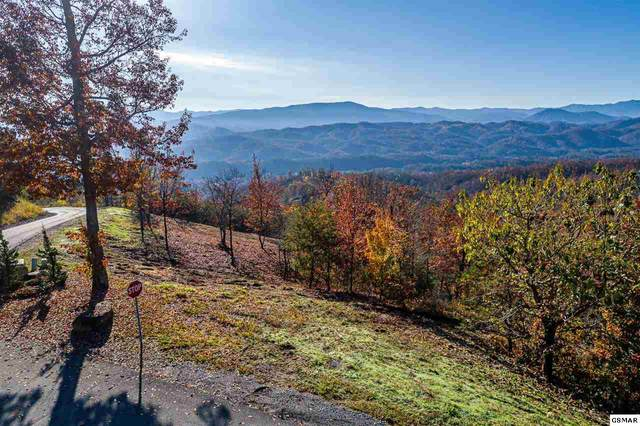 Lot 63 Summit Trails Dr, Sevierville, TN 37862 (#230894) :: Billy Houston Group