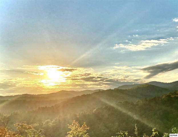 Lot 172 Smoky Bluff Trl, Sevierville, TN 37862 (#230956) :: Colonial Real Estate