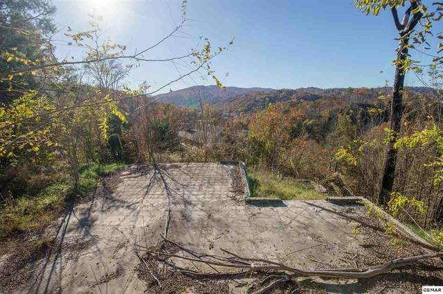 261 Browns Ridge Road, Gatlinburg, TN 37738 (#230984) :: Jason White Team | Century 21 Legacy
