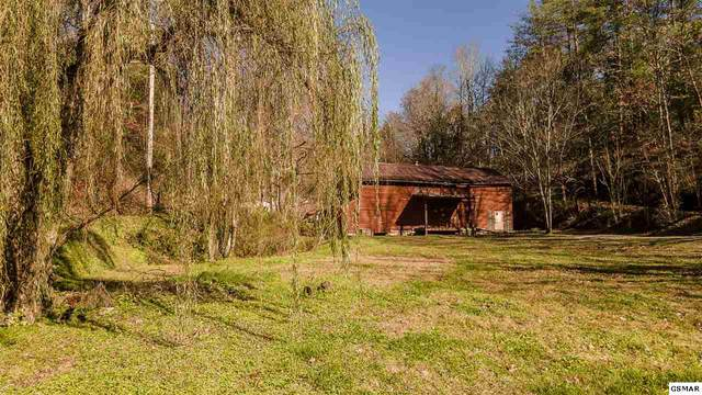 1529 Wilderness Way, Sevierville, TN 37876 (#231213) :: Jason White Team | Century 21 Legacy