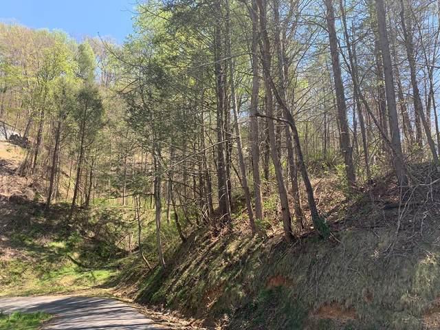 Davenport Rd, Gatlinburg, TN 37738 (#231259) :: Tennessee Elite Realty